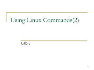 Using Linux  Commands(2)