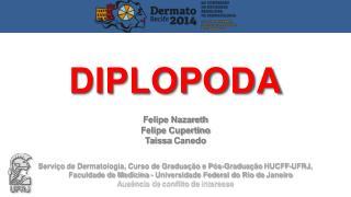 Felipe Nazareth Felipe Cupertino Taissa  Canedo