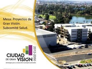 Mesa: Proyectos de Gran Visión. Subcomité Salud.