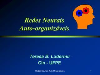 Redes Neurais  Auto-organizáveis