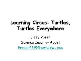 Learning Circus: Turtles, Turtles Everywhere