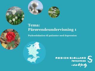 Tema: P�r�rendeundervisning 1 Psykoedukation til patienter med depression