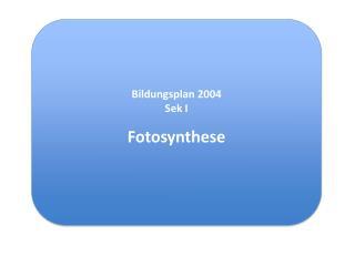 Bildungsplan 2004 Sek  I Fotosynthese