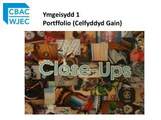 Ymgeisydd 1  Portffolio  ( Celfyddyd  Gain)