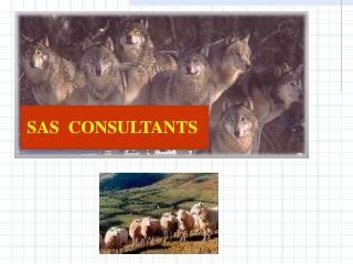 SAS  CONSULTANTS