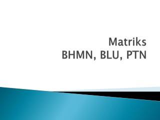 Matriks  BHMN, BLU, PTN