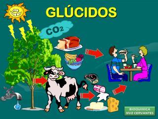 GL�CIDOS