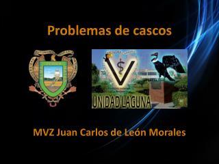 Problemas de cascos MVZ Juan  Carlos de León Morales