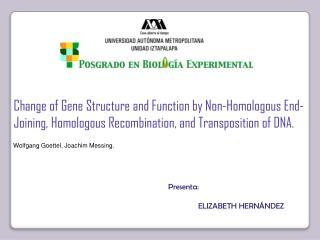 Presenta:                ELIZABETH HERNÁNDEZ