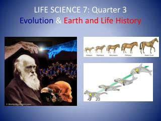 LIFE SCIENCE 7: Quarter 3  Evolution  &  Earth and Life History