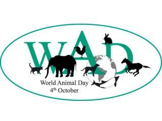 4. do 10. oktobra     Svetovni teden
