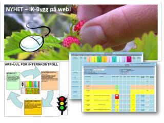 IK - Bygg på web: Formål