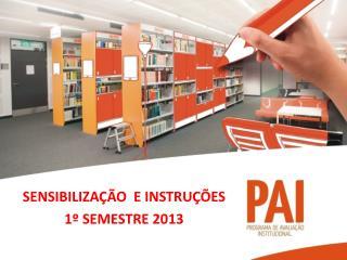 SENSIBILIZAÇÃO  E INSTRUÇÕES 1º  SEMESTRE  2013