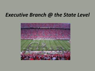 Executive Branch @ the State Level