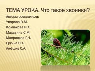 ТЕМА УРОКА. Что такое хвоинки ? Авторы-составители: Уварова В.М. Колпакова  И.А. Малыгина С.М.