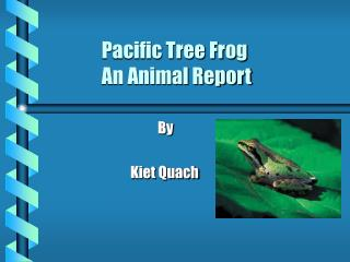Pacific Tree Frog                 An Animal Report