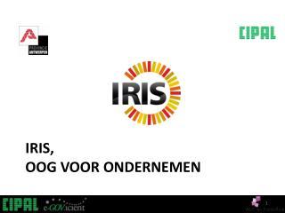 IRIS ,  Oog  voor ondernemen