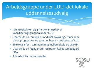 Arbejdsgruppe under LUU -det lokale uddannelsesudvalg