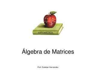 Álgebra de Matrices