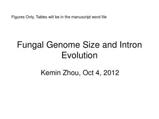 Fungal Genome Size and Intron Evolution