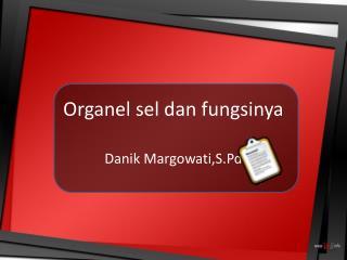 Organel sel dan fungsinya