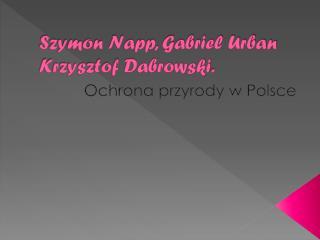 Szymon Napp, Gabriel Urban  K rzysztof  Dabrowski .