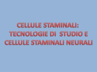 CELLULE STAMINALI:  TECNOLOGIE  DI   STUDIO E  CELLULE STAMINALI NEURALI