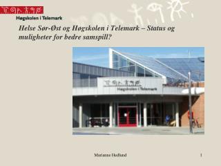 Helse Sør-Øst og Høgskolen i Telemark – Status og muligheter for bedre samspill?