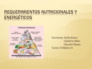Requerimientos nutricionales y energéticos