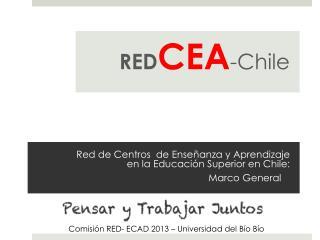 Red de Centros de  Enseñanza  y Aprendizaje en la Educación Superior en Chile:  Marco General