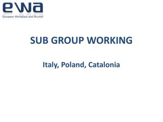 SUB GROUP WORKING Italy, Poland, Catalonia