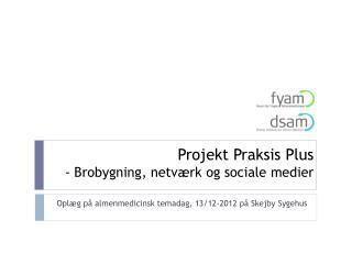 Projekt Praksis Plus - Brobygning, netværk og sociale medier