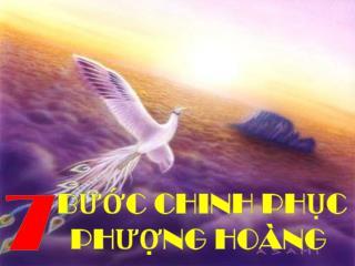 BƯỚC CHINH PHỤC PHƯỢNG HOÀNG