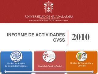 INFORME DE ACTIVIDADES CVSS