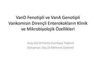 Araş.Gör. Dr.Fatma Esenkaya Taşbent Danışman:  Doç.Dr .Mehmet Özdemir