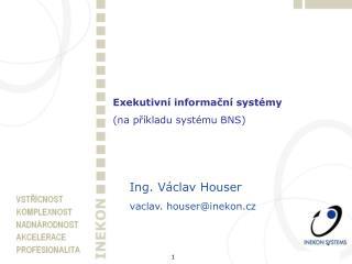 Exekutivní informační systémy (na příkladu systému BNS)