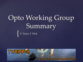 Opto  Working Group Summary