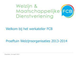 Welkom bij het werkatelier FCB  Proeftuin Welzijnsorganisaties 2013-2014