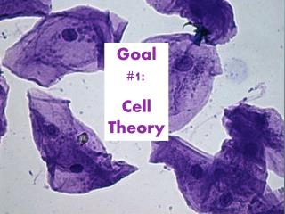 Goal #1:  Cell Theory