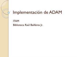 Implementación de ADAM