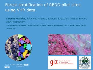 Forest stratification of REDD pilot sites, using VHR data.