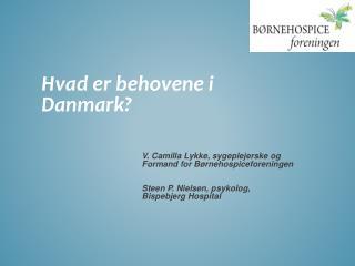 Hvad er behovene i Danmark? V.  Camilla  Lykke,  sygeplejerske  og