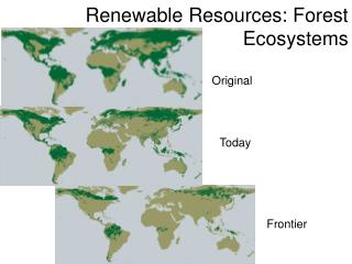 Renewable Resources: Forest Ecosystems