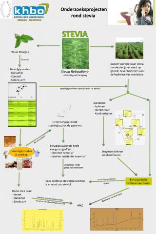 Onderzoeksprojecten rond  stevia
