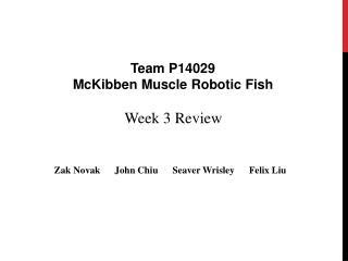 Week 3 Review