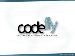PWSZ Gniezno //  codefly  2009