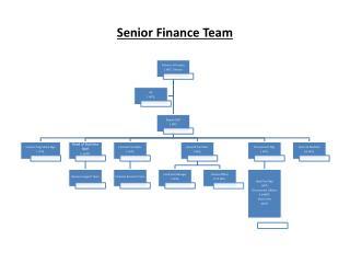 Senior Finance Team