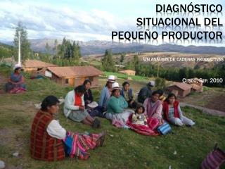 Diagn�stico situacional del peque�o productor