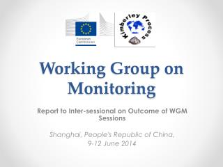 Working Group on Monitoring