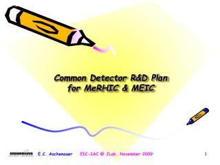Common  Detector R&D Plan for  MeRHIC &  MEIC